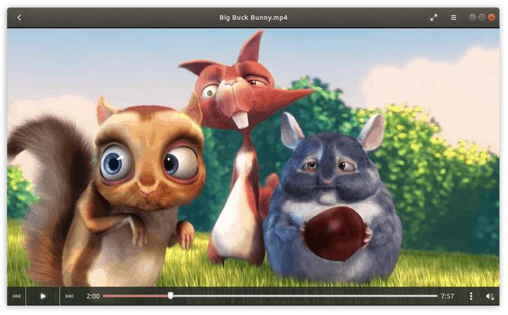 Ubuntu plays all your movies